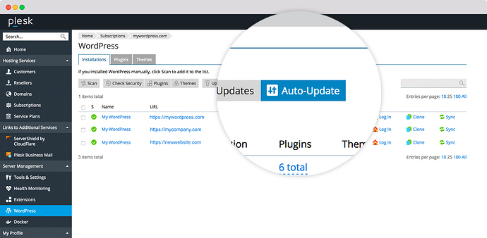 Staging environment best practices - Plesk WordPress Toolkit